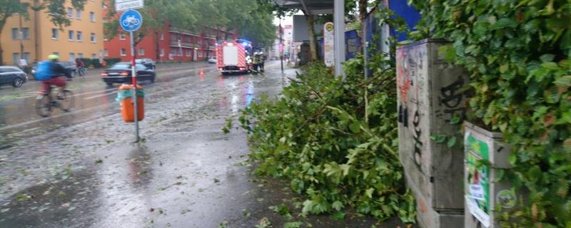 Feuerwehr, Baum, Unwetter, © baden.fm